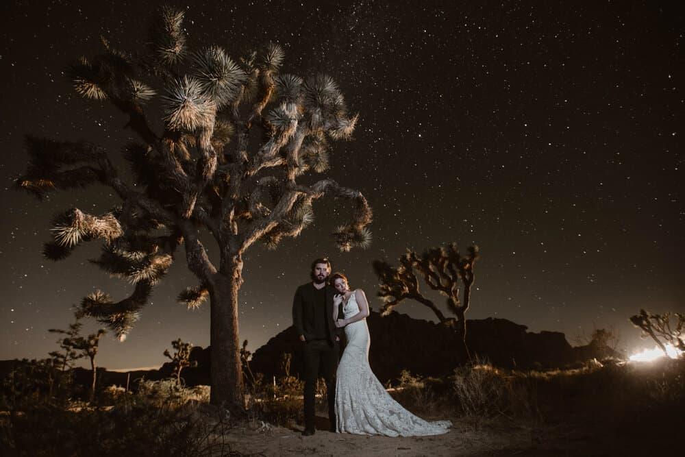 joshua-tree-night-photography