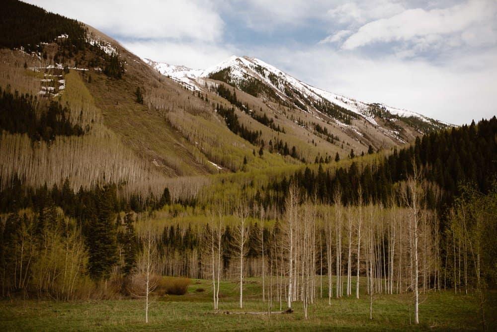 white-forest-colorado