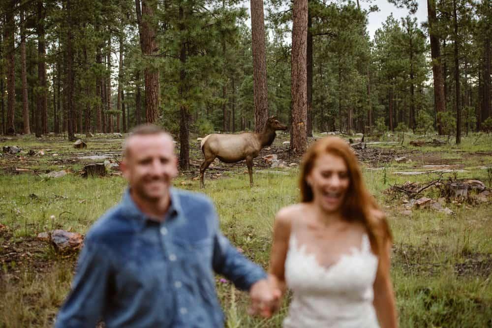 payson-wedding-photographer