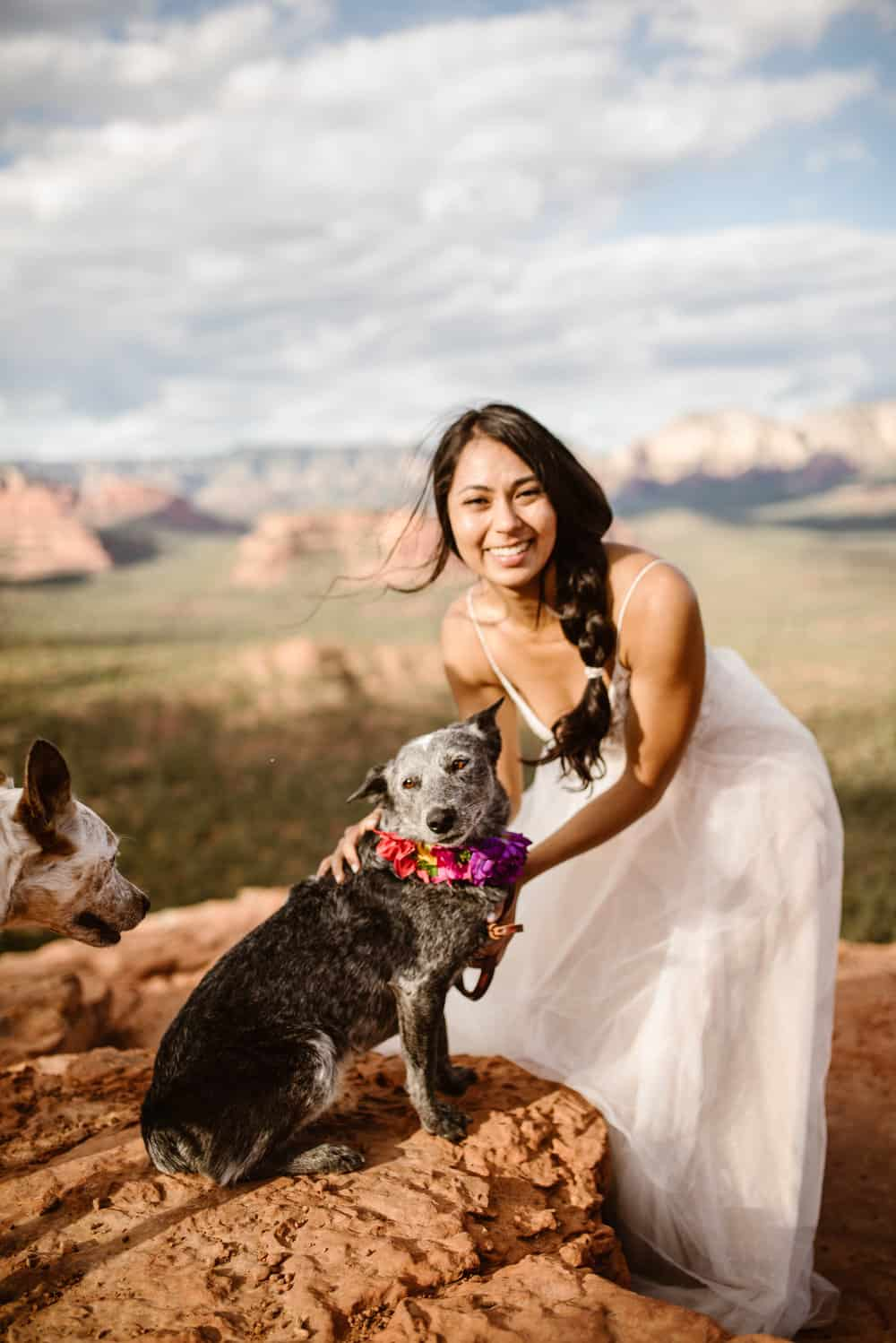 eloping-with-dogs