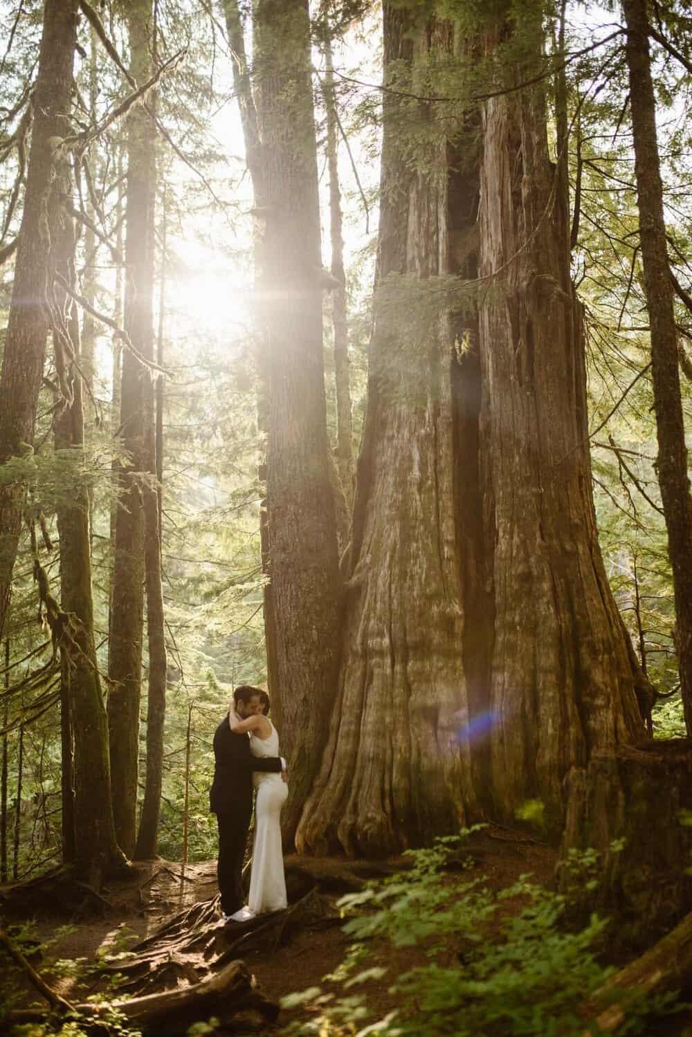 forest-elopement