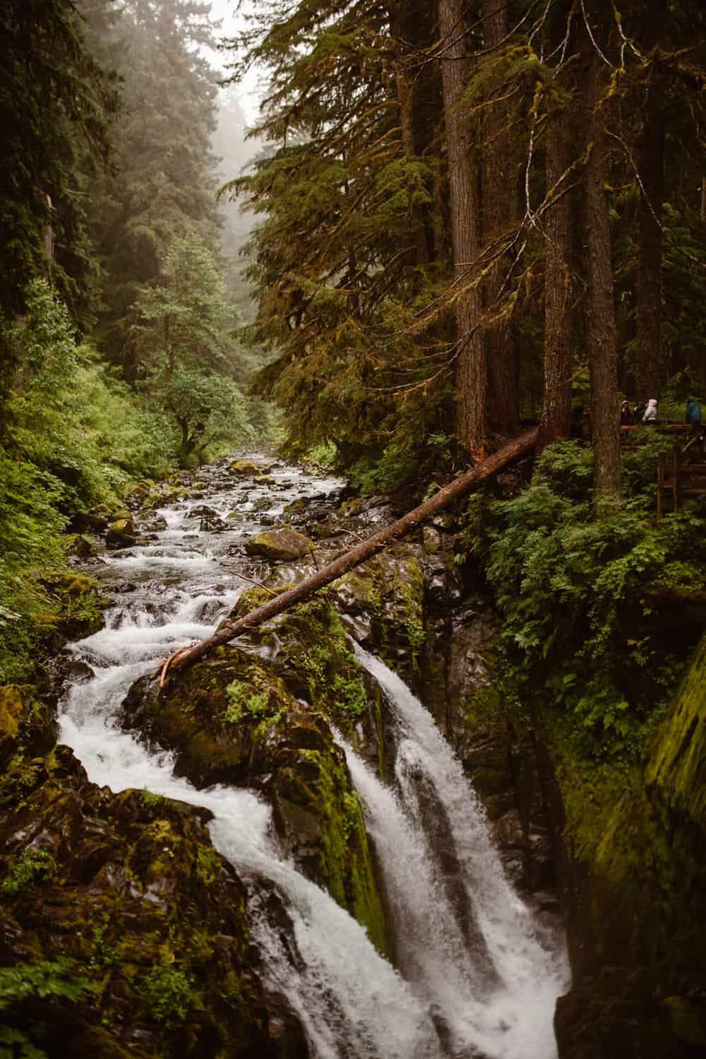 waterfalls-in-olympic