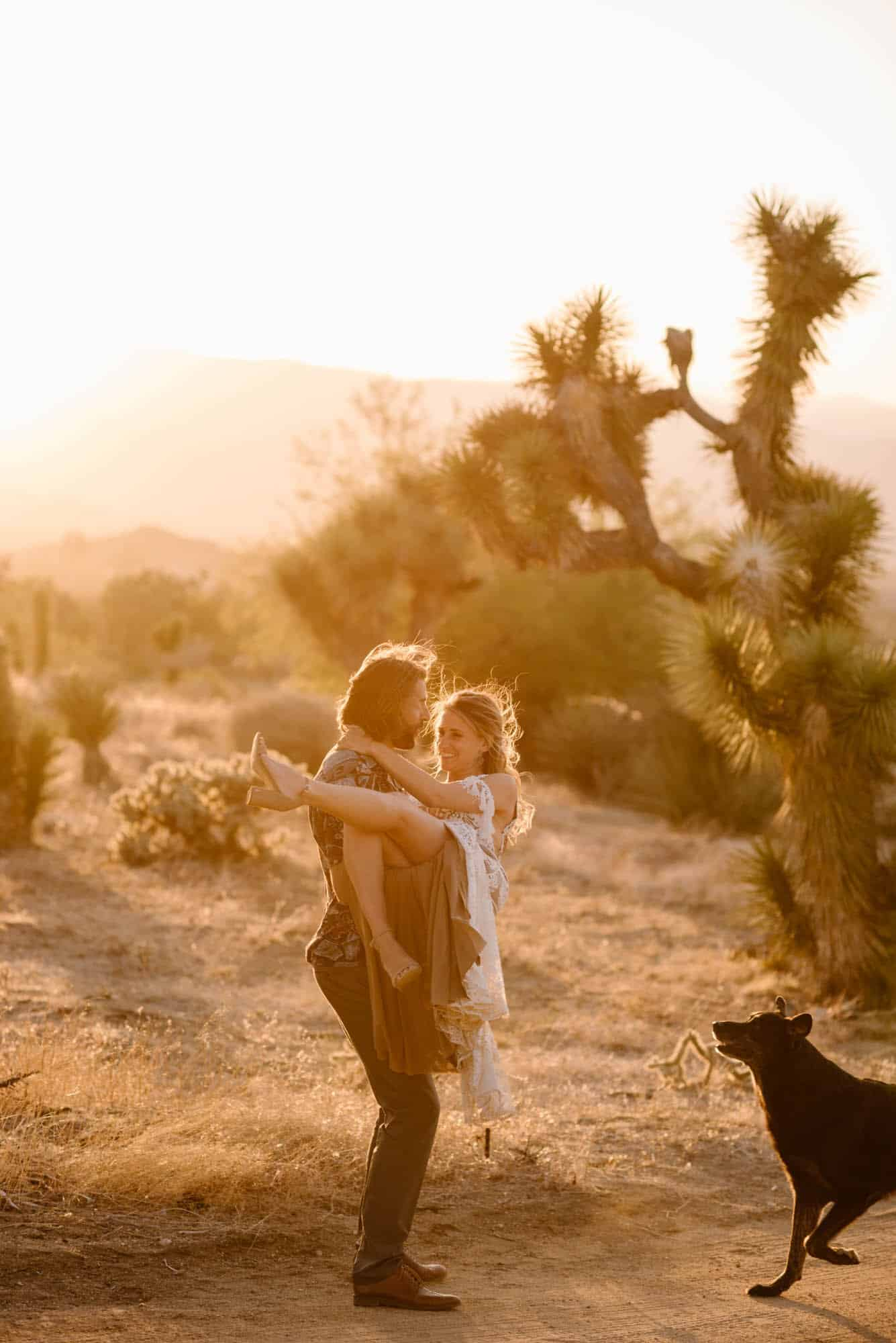 elopement with a dog